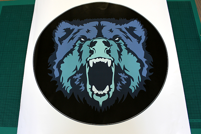 Vinyl wheel cover sticker